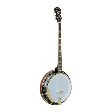 Custom Gold Tone PS-250 Plectrum Special Banjo
