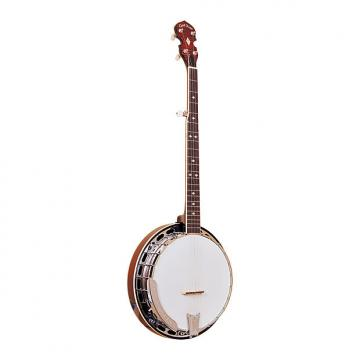 Custom Gold Tone BG-250F Bluegrass Banjo with Flange