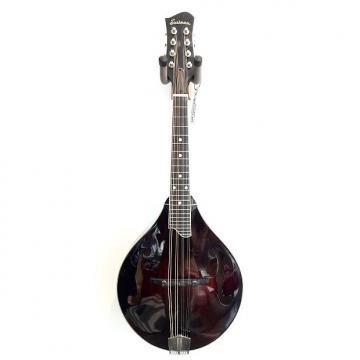Custom Eastman MD505 Classic A Style Mandolin Violin Finish SALE