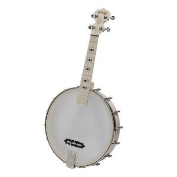 Custom Deering Tenor Banjo Ukulele