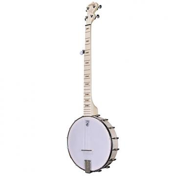 Custom Deering Goodtime 5 String Banjo