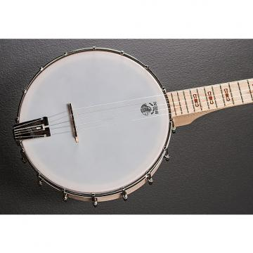 Custom Deering Goodtime 5 String Banjo Recent Natural