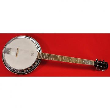 Custom Fender 6 String Closed Back Banjo Professionally Set Up!