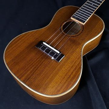 Custom New KALA KA-KCG Hawaiian Koa (Top, Back and Sides) Concert Ukulele