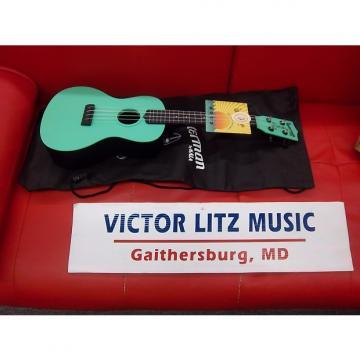 Custom Kala Waterman concert size ukulele ka-cwb-gn surf green