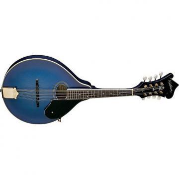 Custom Washburn M1SDLTBL A-Style Mandolin (Blue)