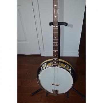 Custom Gold Tone CC Plectrum Brand new never played Hi Quality with resonator pics of actual Banjo
