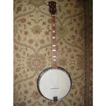 Custom Hohner Vintage Resonator Banjo