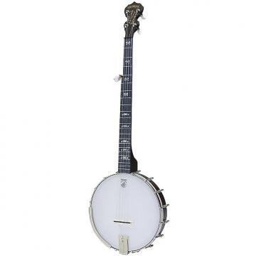 Custom New Deering Artisan Goodtime 5-String Openback Banjo with Free Shipping