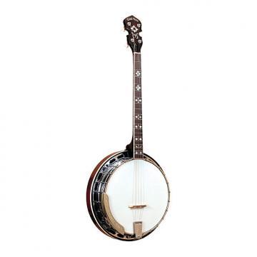 Custom Gold Tone TS-250 Tenor Special Banjo