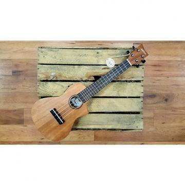 Custom Ashton UKE240EQMH Electro-Acoustic Concert Ukulele