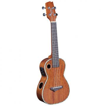 Custom Riptide EUC-5NG Acoustic-Electric Concert Ukulele - Solid Mahogany Top