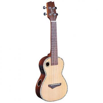 Custom Riptide EUC-2N Acoustic-Electric Concert Ukulele - Solid Spruce/Rosewood