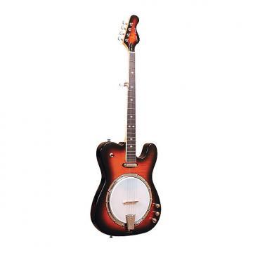 Custom Gold Tone EBT Electric Banjo