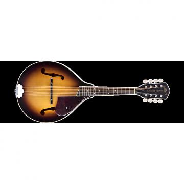 Custom Gretsch G9300 New Yorker Mandolin - 2-Tone Sunburst