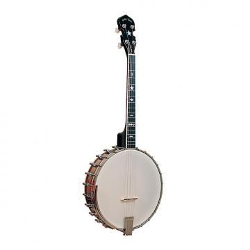 Custom Gold Tone IT-800 Irish Tenor Banjo with Case