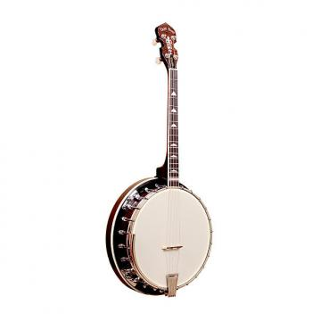 Custom Gold Tone IT-250R Irish Tenor Banjo with Resonator