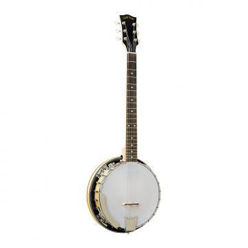 Custom Gold Tone GT-500 Banjo Guitar