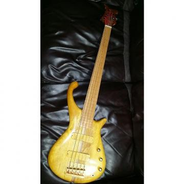 Custom Tom Martinson Nessie 5 Fretless - REDUCED !