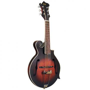 Custom Gold Tone Mando-Guitar 6-String with Piezo Pickup and Case - Model F6