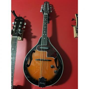 Custom Ibanez A Style Mandolin