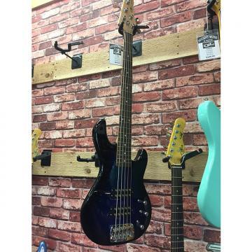 Custom G&L Tribute Series L-2500 5-String Bass 2016 Blueburst