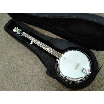 Custom Ibanez B300 5 String Banjo, Brass Tone Ring, Rosewood Resonator, Hard Case Natural