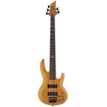 Custom ESP B-155DX 5-String Bass Guitar - Honey Natural