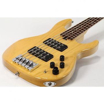 Custom ESP AP-SL5