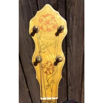 Custom Vintage Ludwig Silver Flash Tenor Banjo 1920s 1930s Snake Head