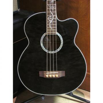 Custom Michael Kelly Dragonfly Acoustic Bass