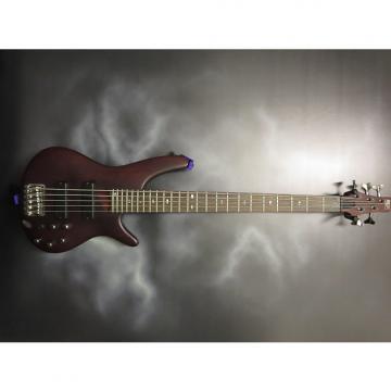 Custom Ibanez 505