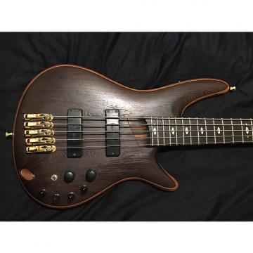 Custom Ibanez Prestige 5005