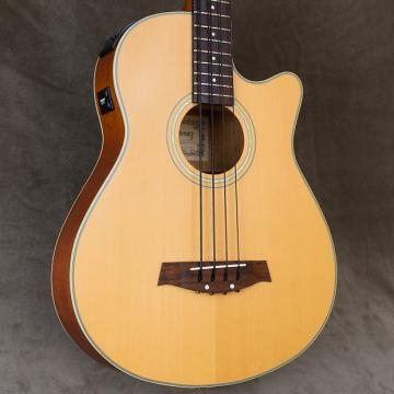 Custom Ibanez AEB80-LG Acoustic-Electric Bass Guitar