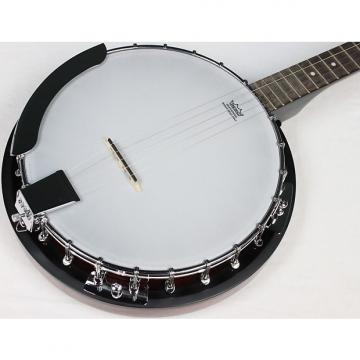 Custom Savannah SB-100 24 Bracket 5-String Banjo, NEW! #2446