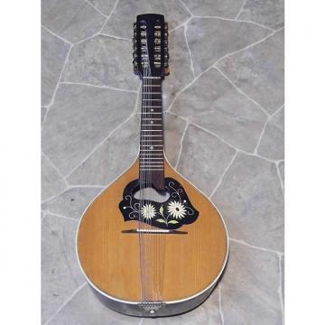 Custom fine old green MANDRIOLA 12string teardrop mandolin mando GERMANY 1920s