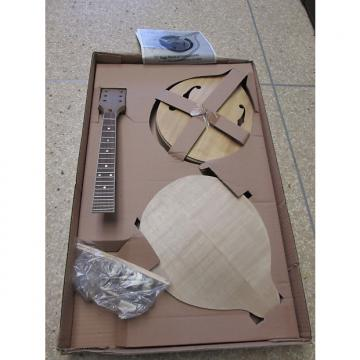Custom Saga AM-10 Build Your Own Mandolin Kit Build Kit