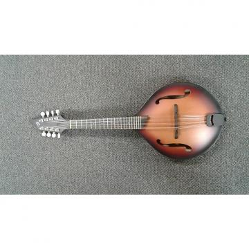 Custom Breedlove American OF Mandolin  Sunburst