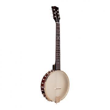 Custom Gold Tone BT-2000 6-String Banjo Guitar