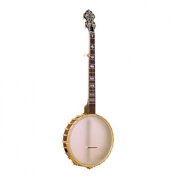 Custom Gold Tone BB-400+ Banjo Bass with Pickup and Case