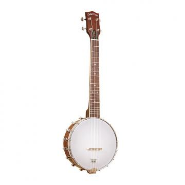 Custom Gold Tone BUT Tenor-Scale Banjo Ukulele with Case
