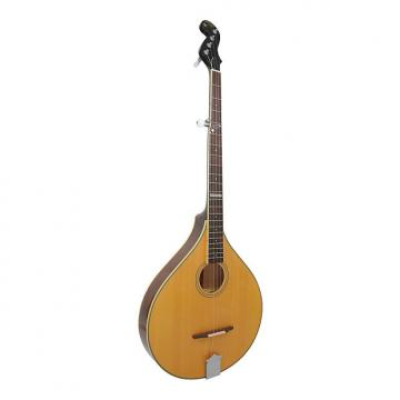 Custom Gold Tone Banjola Woodbody Banjo