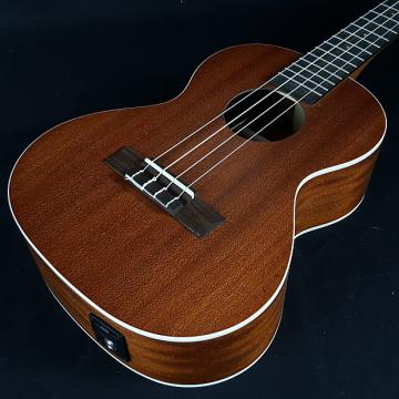 Custom Kala KA-TE Mahogany Tenor Ukulele with EQ
