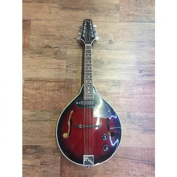 Custom Stagg Acoustic/Electric Mandolin Redburst (M50E)