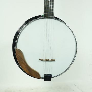 Custom Used Kay KAY BANJO 5-string