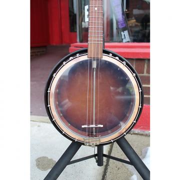 Custom Tobacco Burst Tenor Banjo