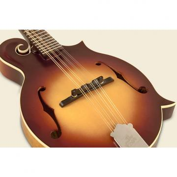 Custom The Loar Mandolin LM-590-MS CONTEMORARY SERIES 2017 TOBACCO BURST