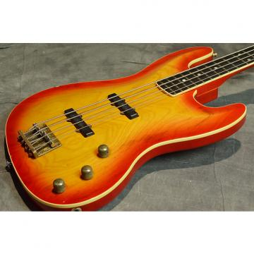 Custom ESP JB TYPE