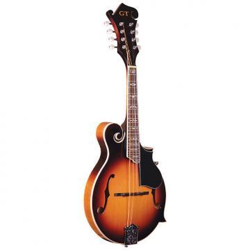 Custom Gold Tone GM-35 F-Style Mandolin with Case