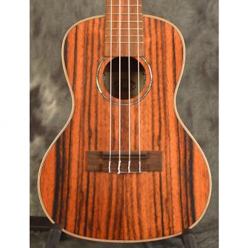 Custom Kala KA-EBY-C Striped Ebony Concert Ukulele w/ FREE SAME DAY SHIPPING